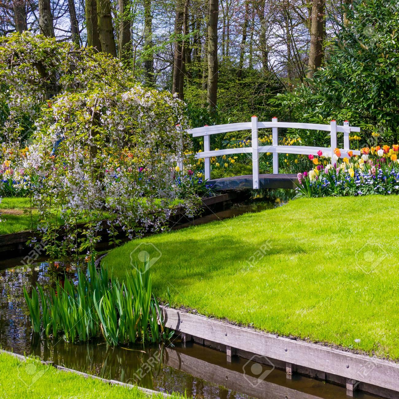 Paysage de jardin conception de jardin moderne. Jardin paysagé et jardin