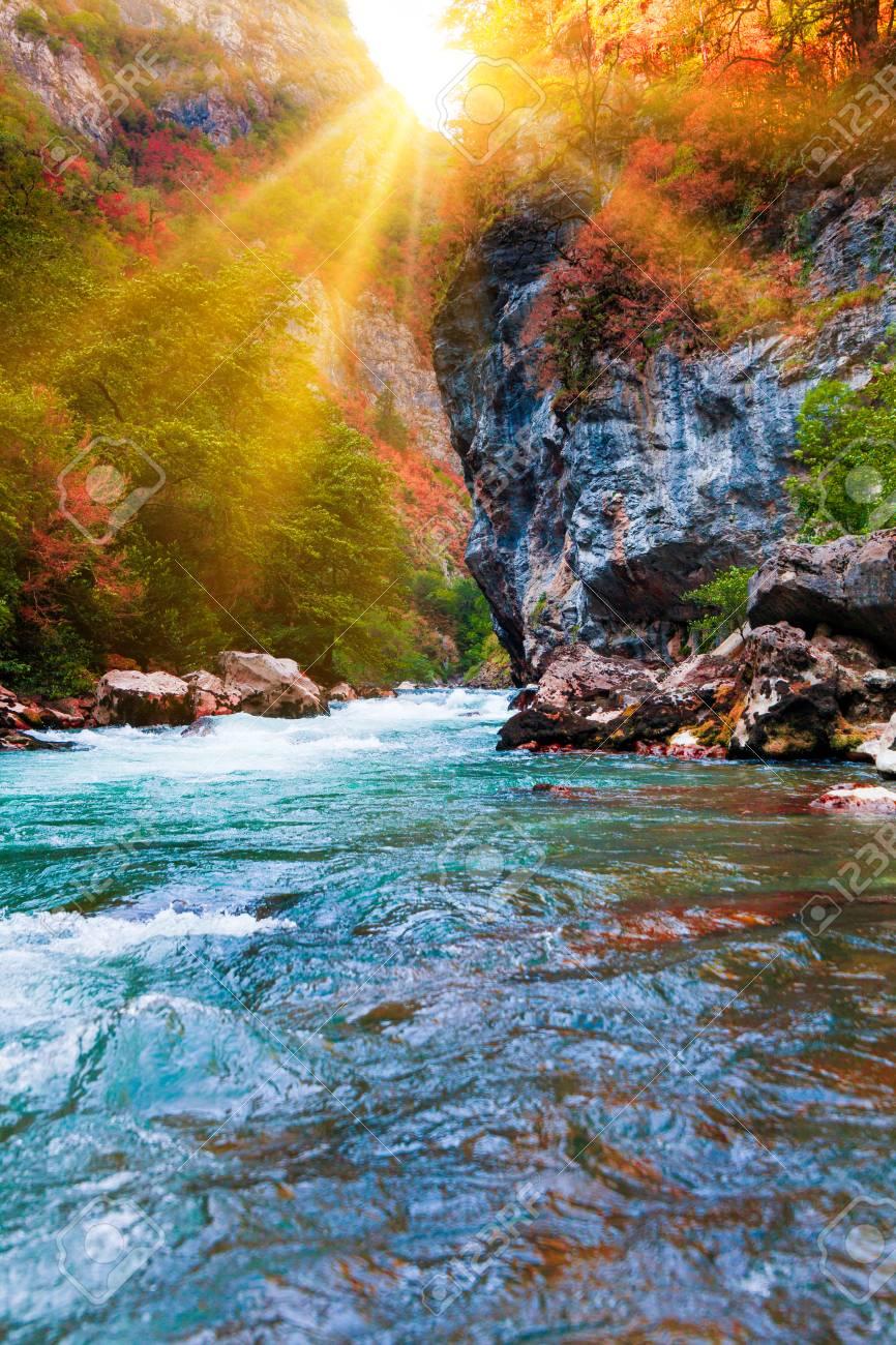 beauty nature scenery landscape background  Nature composition