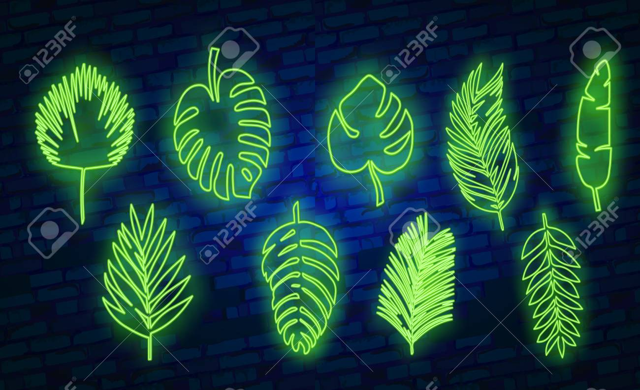 Vector Neon Tropical Exotic Leaves Realistic Jungle Leaves Set Royalty Free Cliparts Vectors And Stock Illustration Image 111753328 Tropical leaves airpod skin $9.00$12.00. vector neon tropical exotic leaves realistic jungle leaves set