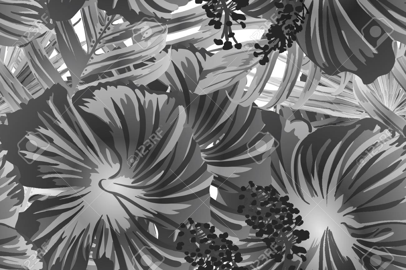 Black white exotic pattern monstera leaves and hibiscus flowers