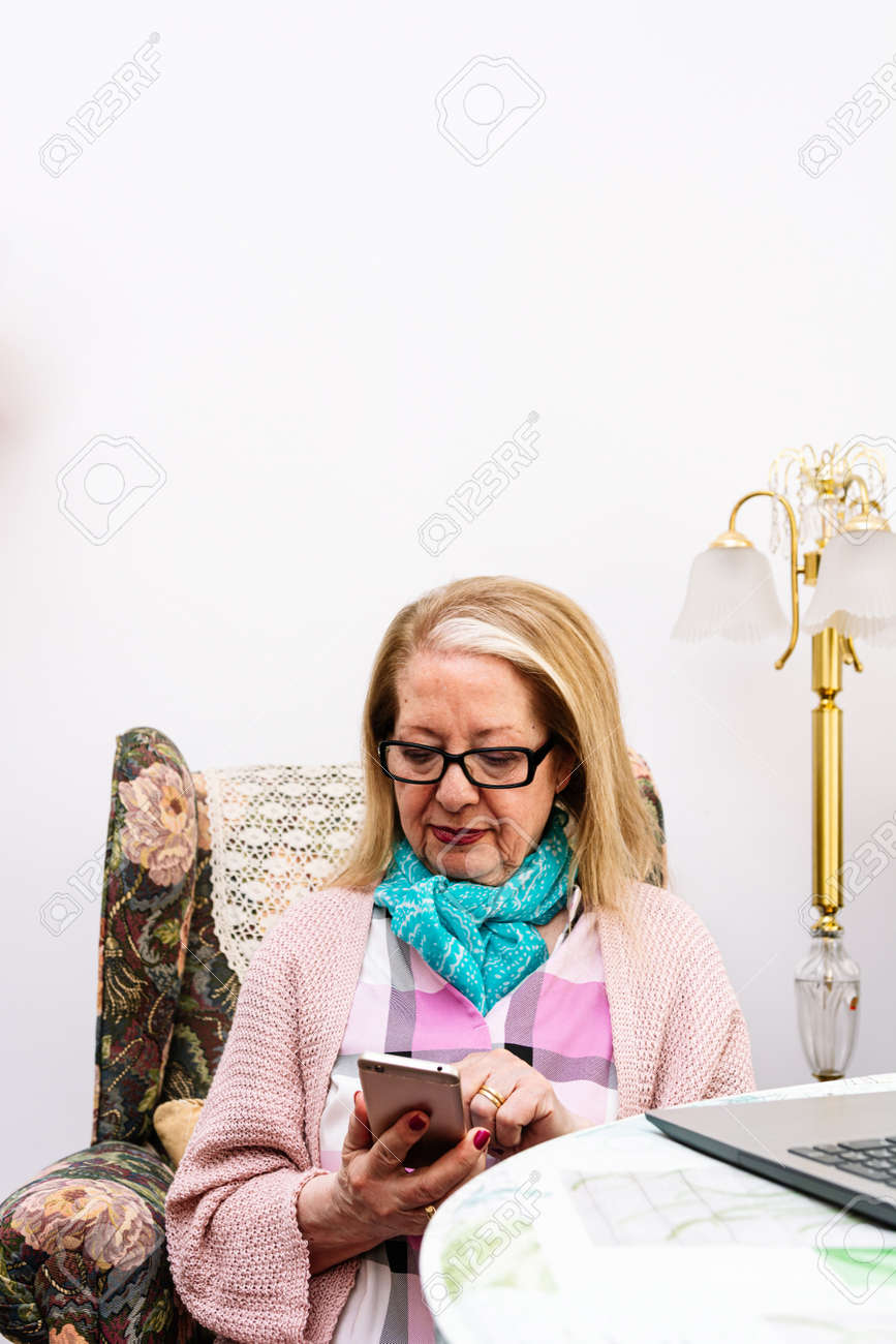 78-year-old grandmother using a laptop at home (concept of technologies for the elderly) - 169767517