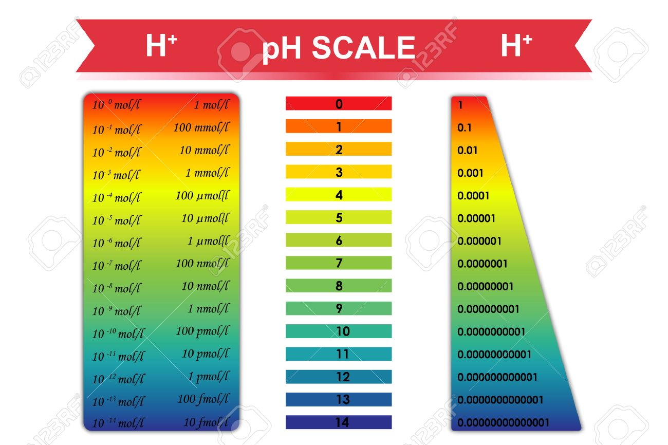 pH scale chart with corresponding hydrogen ion concentration - 42176198