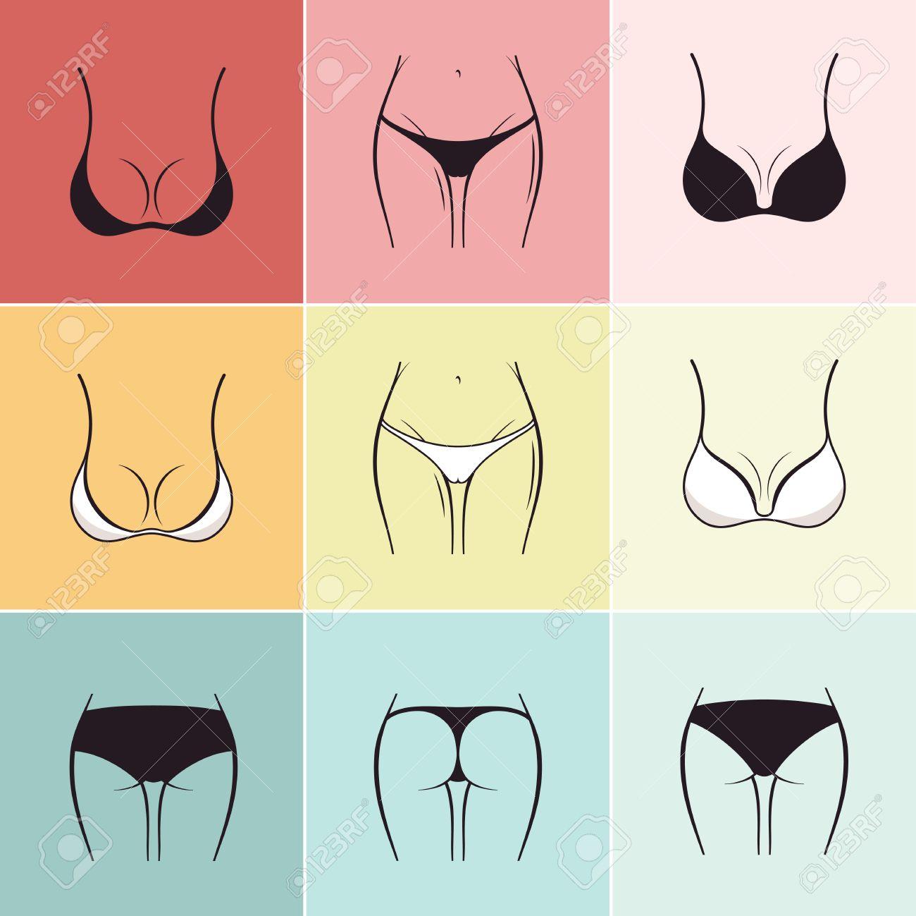 54d060be3c Set of sketch bra and panties Vector. Beautiful elements of womens underwear  Stock Vector -