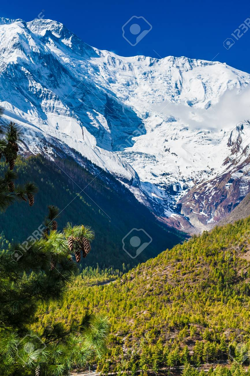 Landscapes Snow Mountains Nature Morning Viewpoint.Mountain Trekking Landscape Background. Nobody photo.Asia Vertial picture. Sunlights White Blue Sky. Himalayas Rocks Stock Photo - 63727129