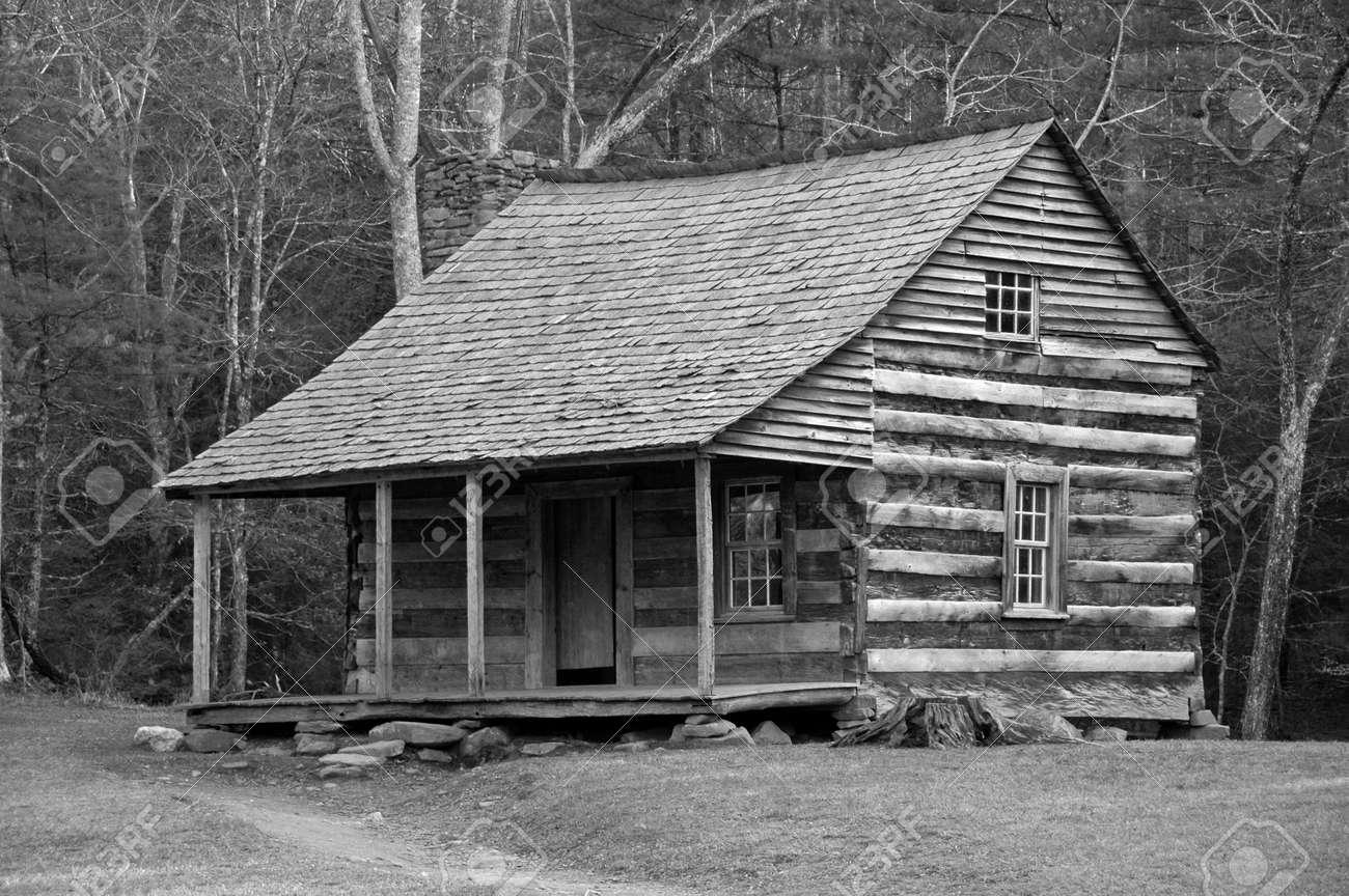 Log Cabin (desaturated) Stock Photo - 794916