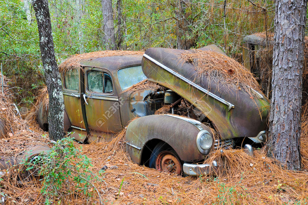 An Old Rusted Out Scrap Car That Has Been Abandoned In The Woods ...