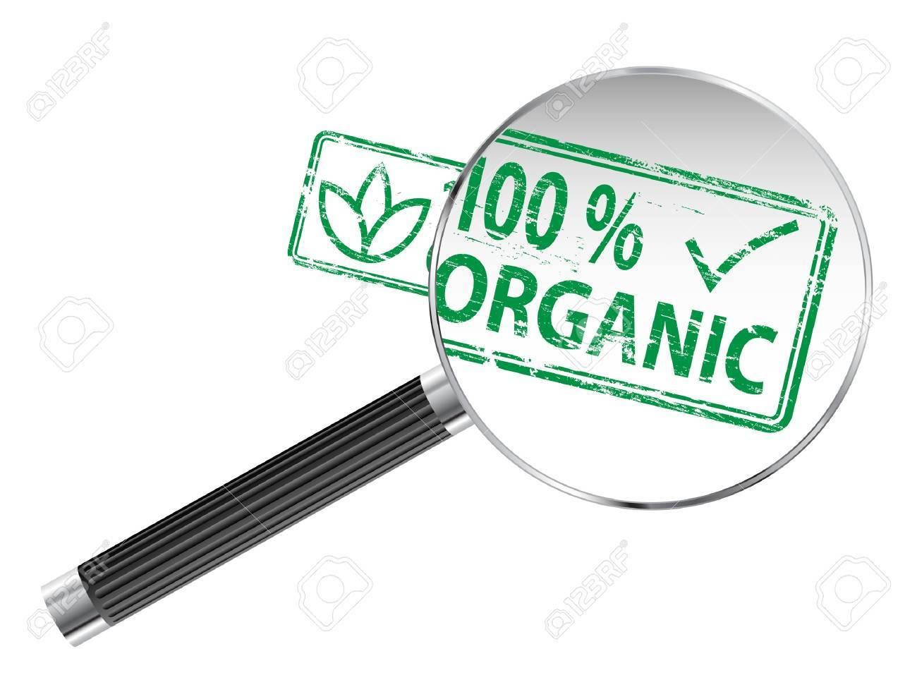 100 Percent Organic rubber stamp under a magnifying glass Stock Vector - 15969857