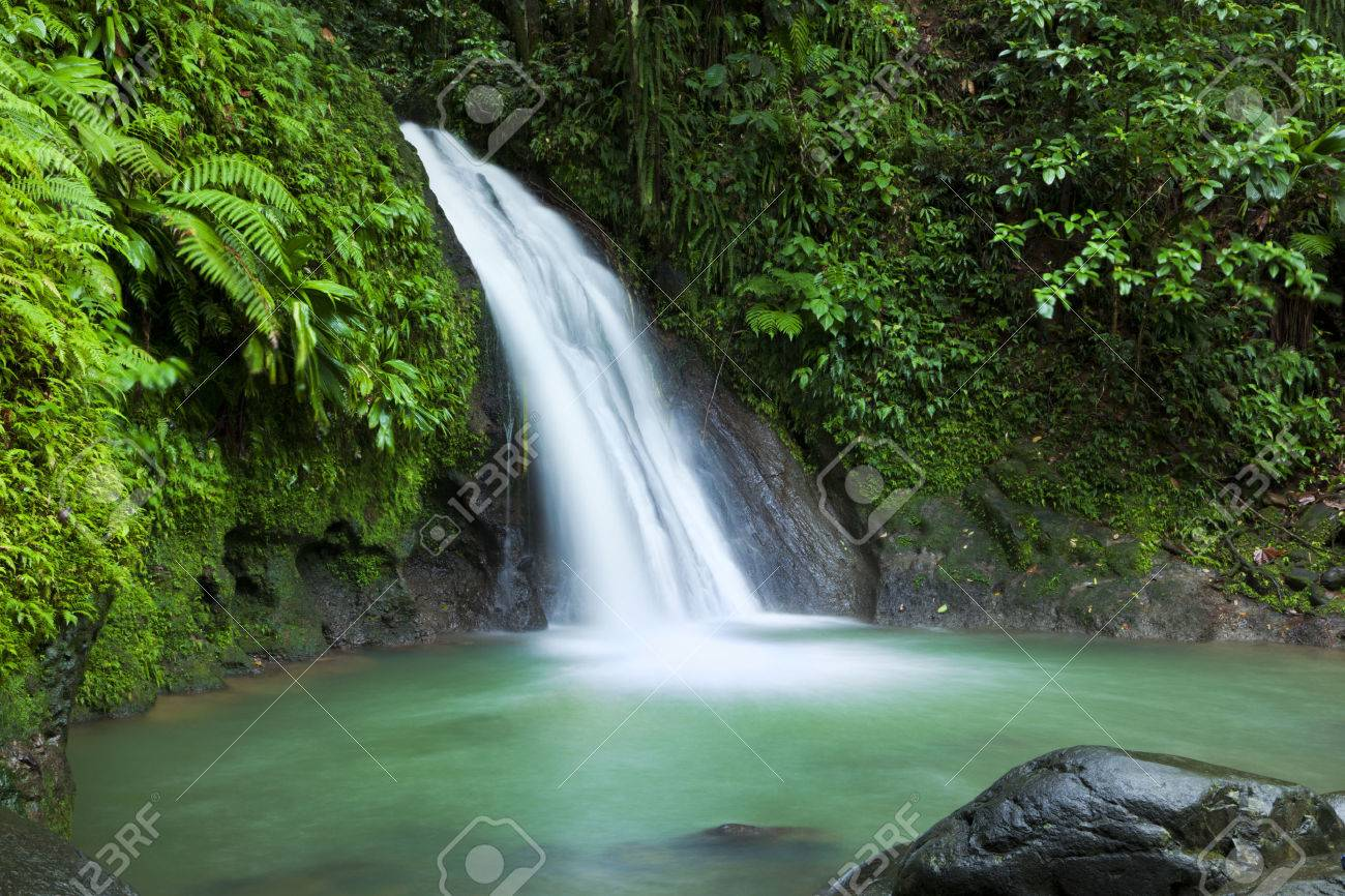 Waterfall in the National Park of Guadeloupe - 29490199