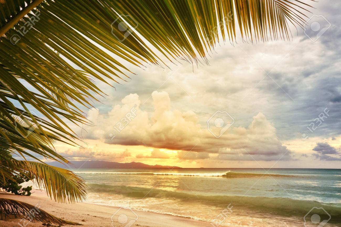 Sunset At Caribbean Sea Beach View Through Palm Tree Leaves Vintage Processing Stock Photo