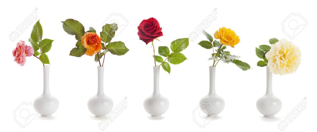 Five Roses Of Different Colors In Small Vases Isolated On White
