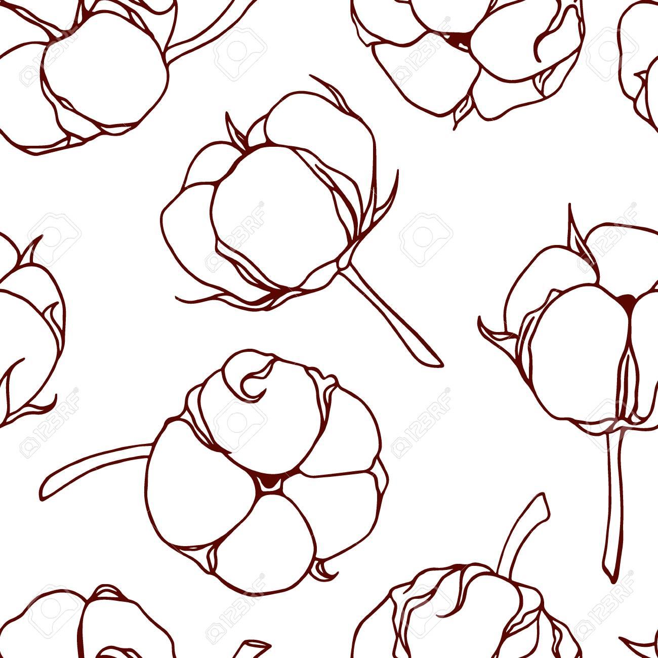 Branche Fleur De Coton vector seamless pattern with hand drawn cotton flowers. beautiful..