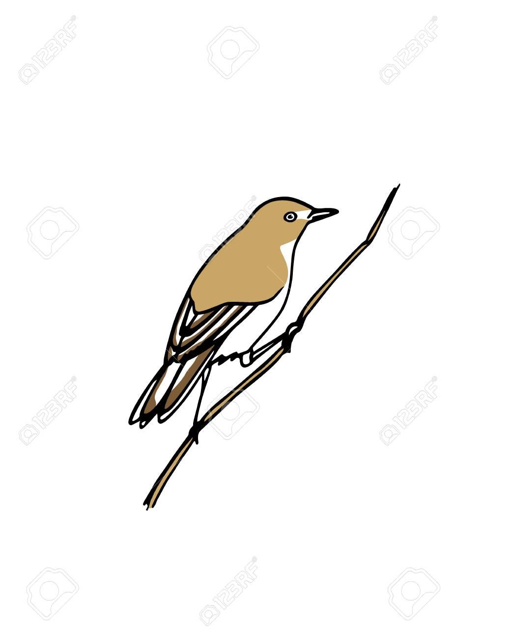 Hand drawn bird - 69147377