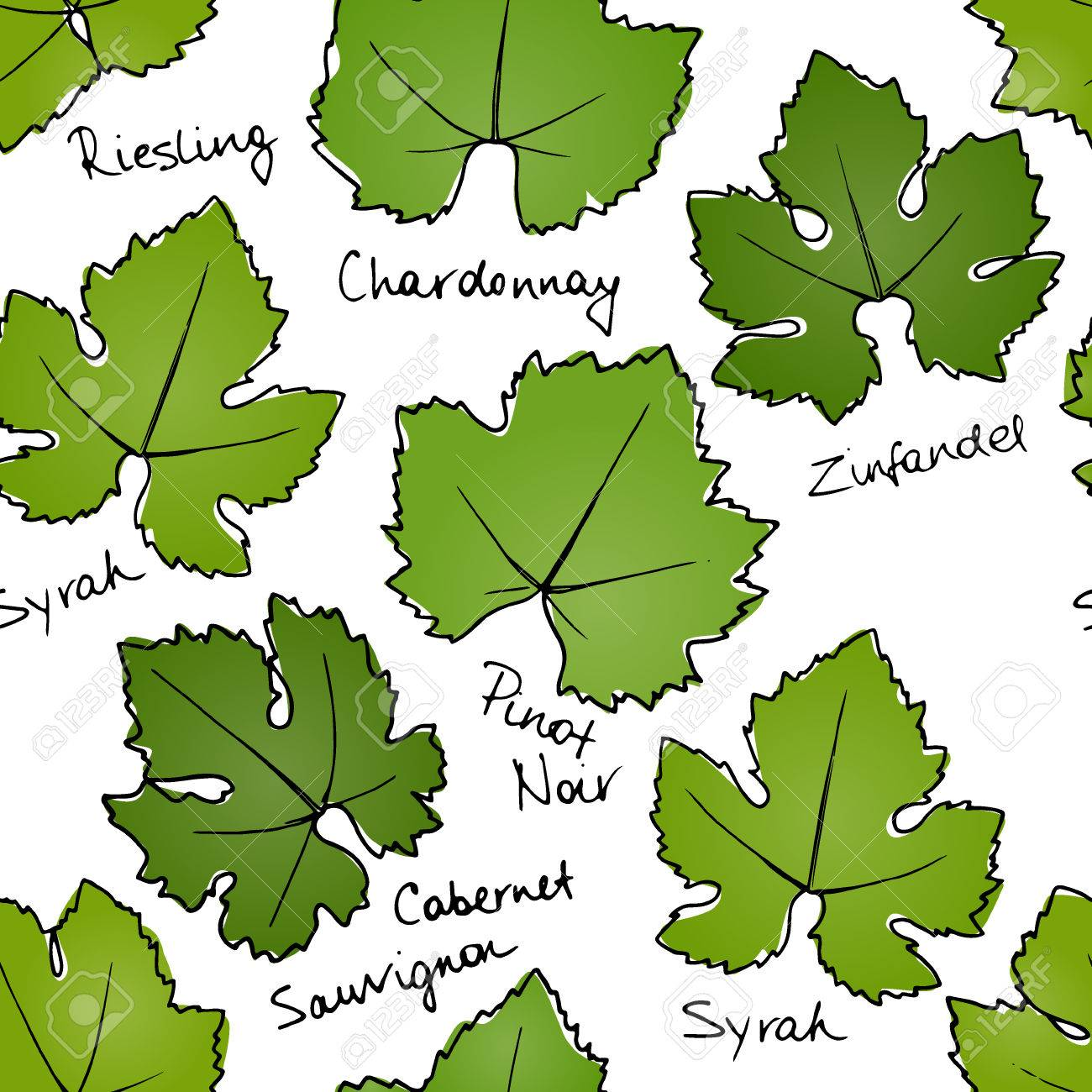 Grape Leaves Pattern Stock Photo Picture And Royalty Free Image Rh 123rf Com Leaf Template Outline