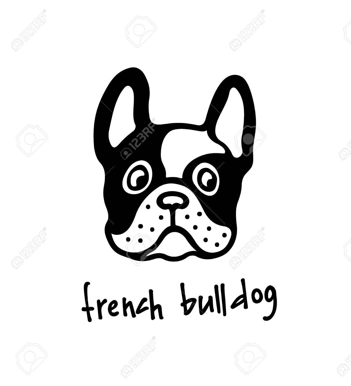 Hand drawn bulldogs head - 136320182