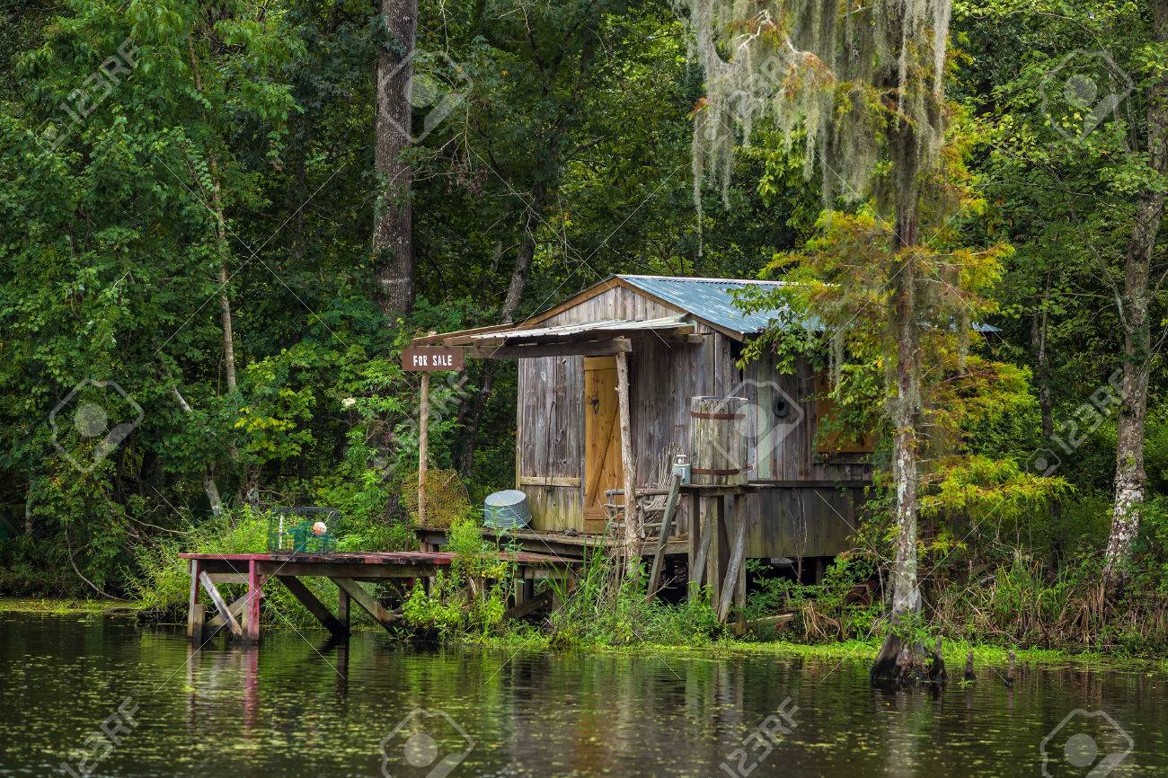 Old house in a swamp in New Orleans Louisiana USA - 51148473