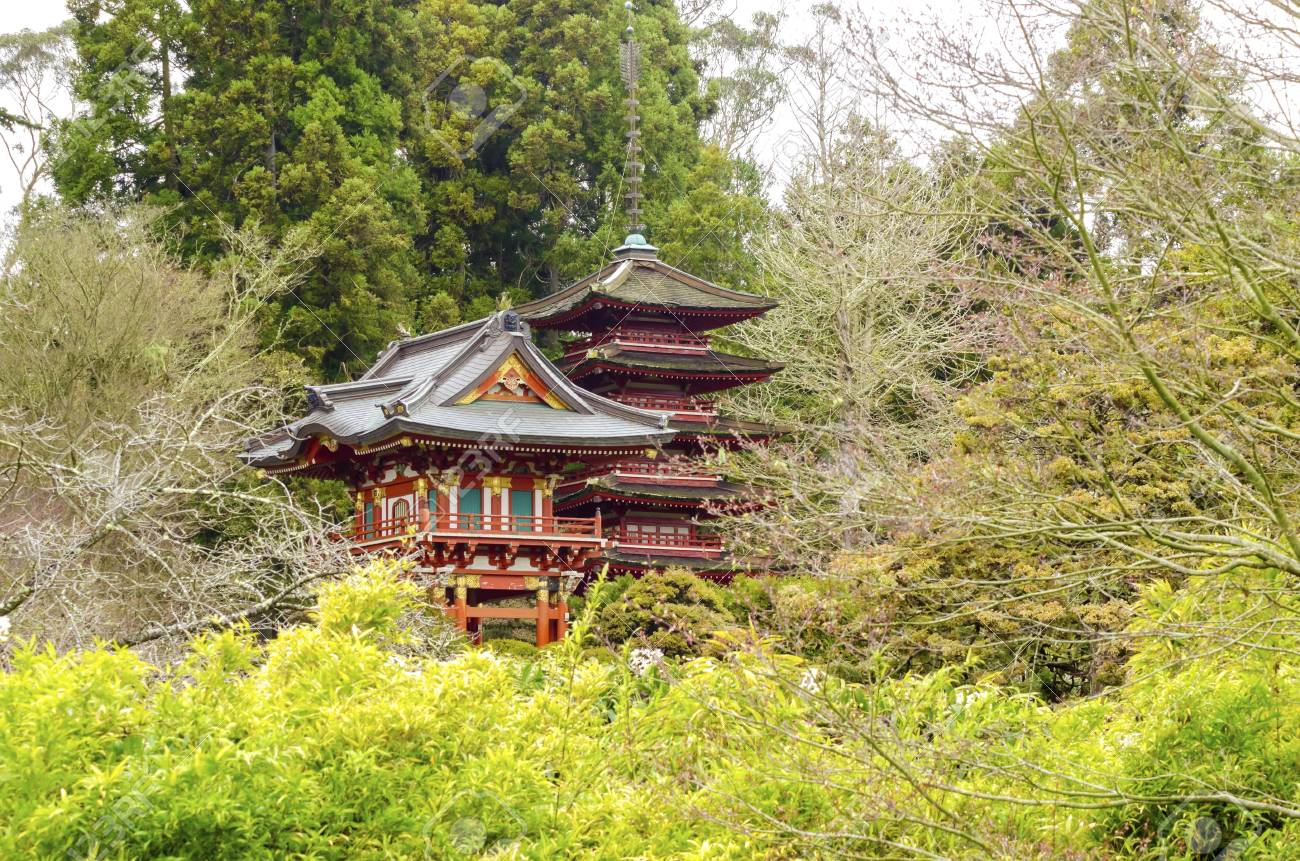 stock photo the japanese tea garden in golden gate park in san francisco california united states of america a view of the native japanese and chinese - Golden Gate Park Japanese Tea Garden