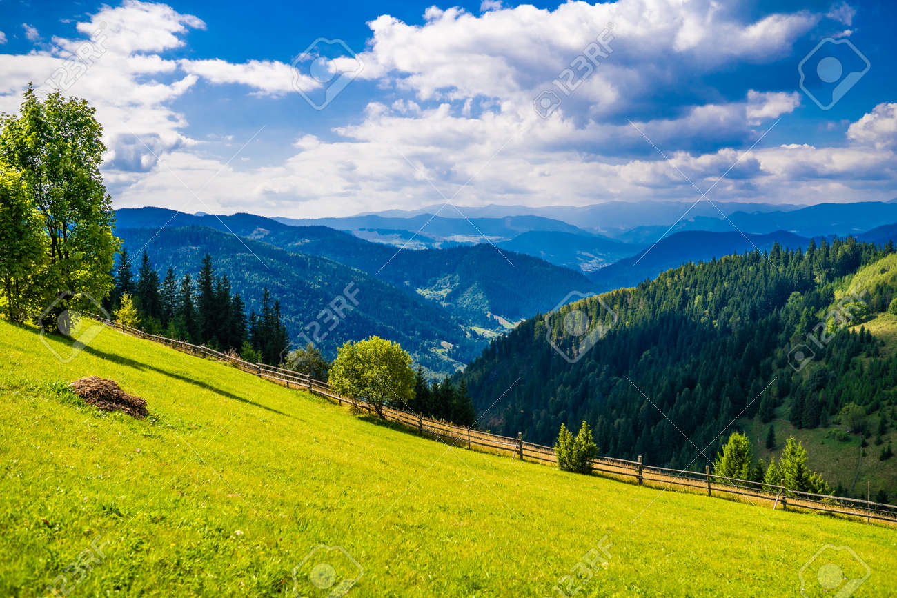 Wonderful landscape of Ukrainian Carpathian mountains. - 156474119