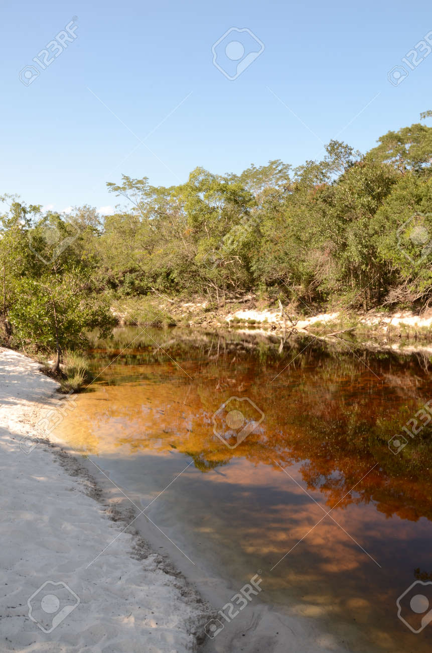 River with sand and fishes at Rio Preto State Park in Minas Gerais called Prainha (translate to little beach) - 151597502
