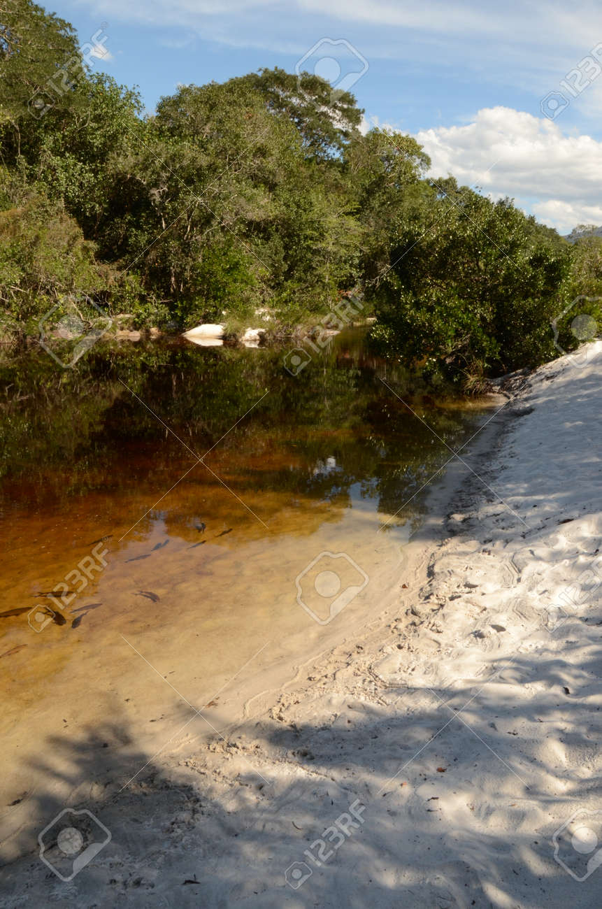 River with sand and fishes at Rio Preto State Park in Minas Gerais called Prainha (translate to little beach) - 151598067