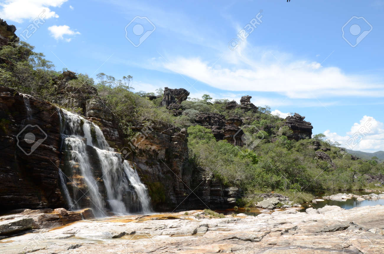 Waterfall in Rio Preto State Park in Minas Gerais at Cachoeira da Semper-Viva (translate to Always-Alive Waterfall, with is the popular name of Actinocephalus polyanthus) - 151844930