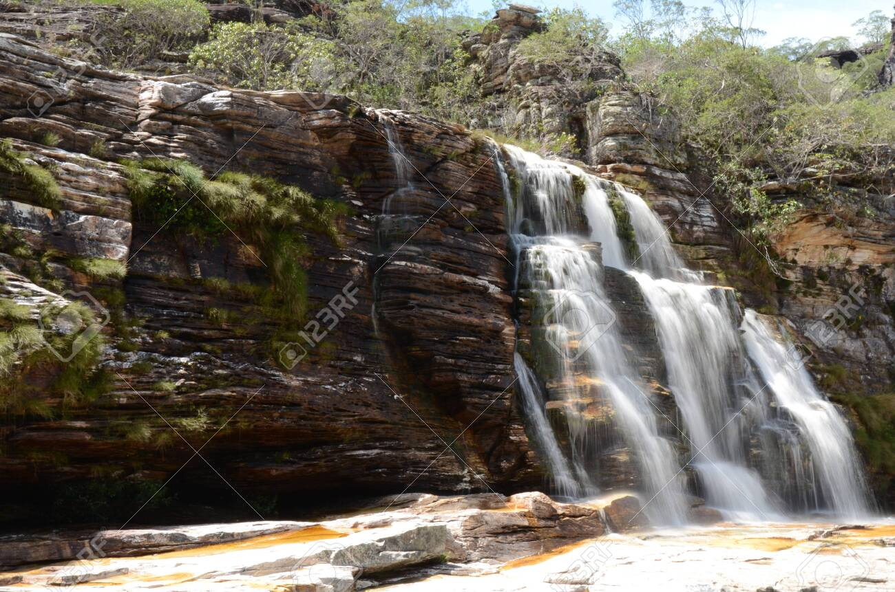 Waterfall in Rio Preto State Park in Minas Gerais at Cachoeira da Semper-Viva (translate to Always-Alive Waterfall, with is the popular name of Actinocephalus polyanthus) - 151844978