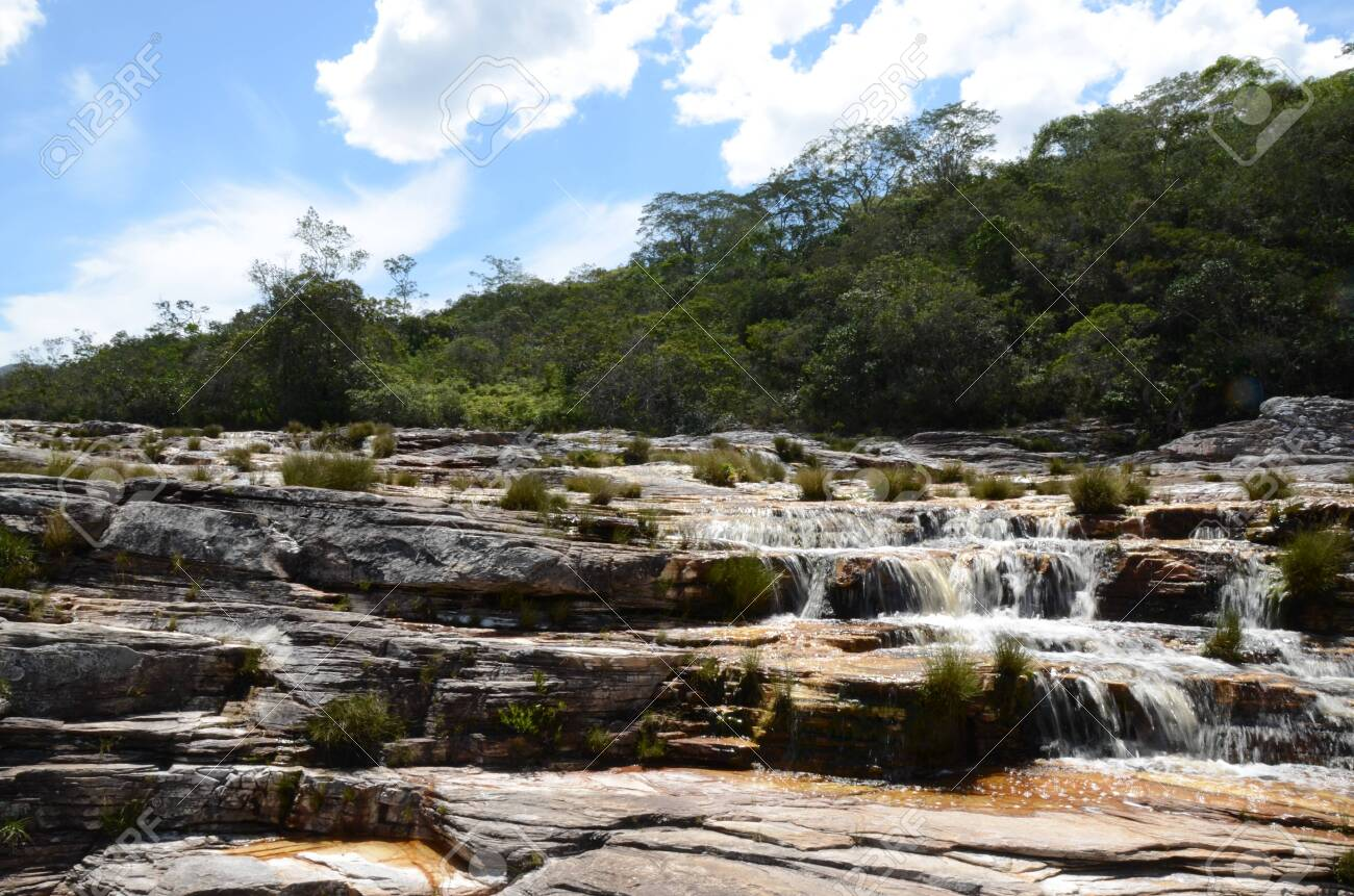 Waterfall in Rio Preto State Park in Minas Gerais at Cachoeira da Semper-Viva (translate to Always-Alive Waterfall, with is the popular name of Actinocephalus polyanthus) - 151844988