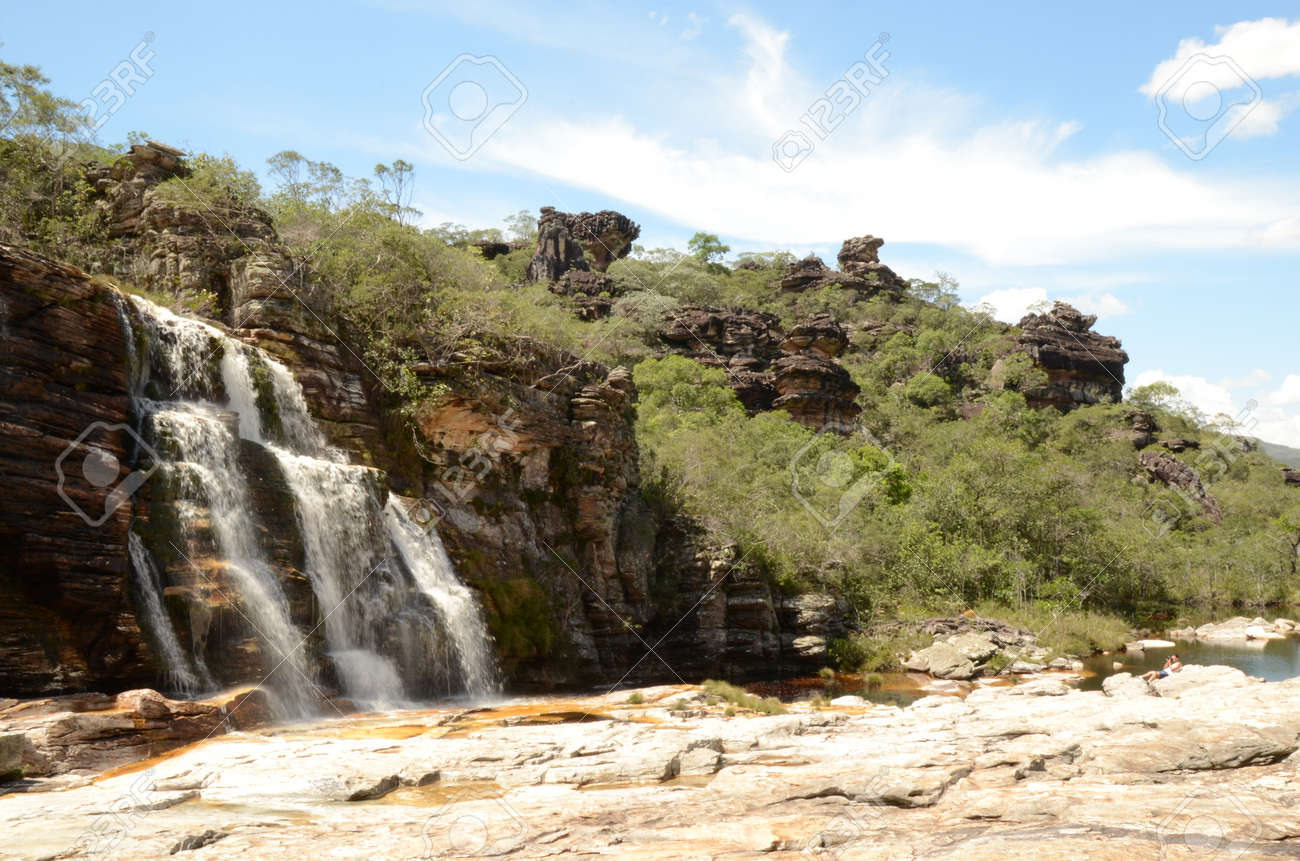 Waterfall in Rio Preto State Park in Minas Gerais at Cachoeira da Semper-Viva (translate to Always-Alive Waterfall, with is the popular name of Actinocephalus polyanthus) - 151844998