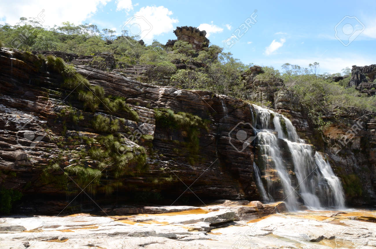 Waterfall in Rio Preto State Park in Minas Gerais at Cachoeira da Semper-Viva (translate to Always-Alive Waterfall, with is the popular name of Actinocephalus polyanthus) - 151845022
