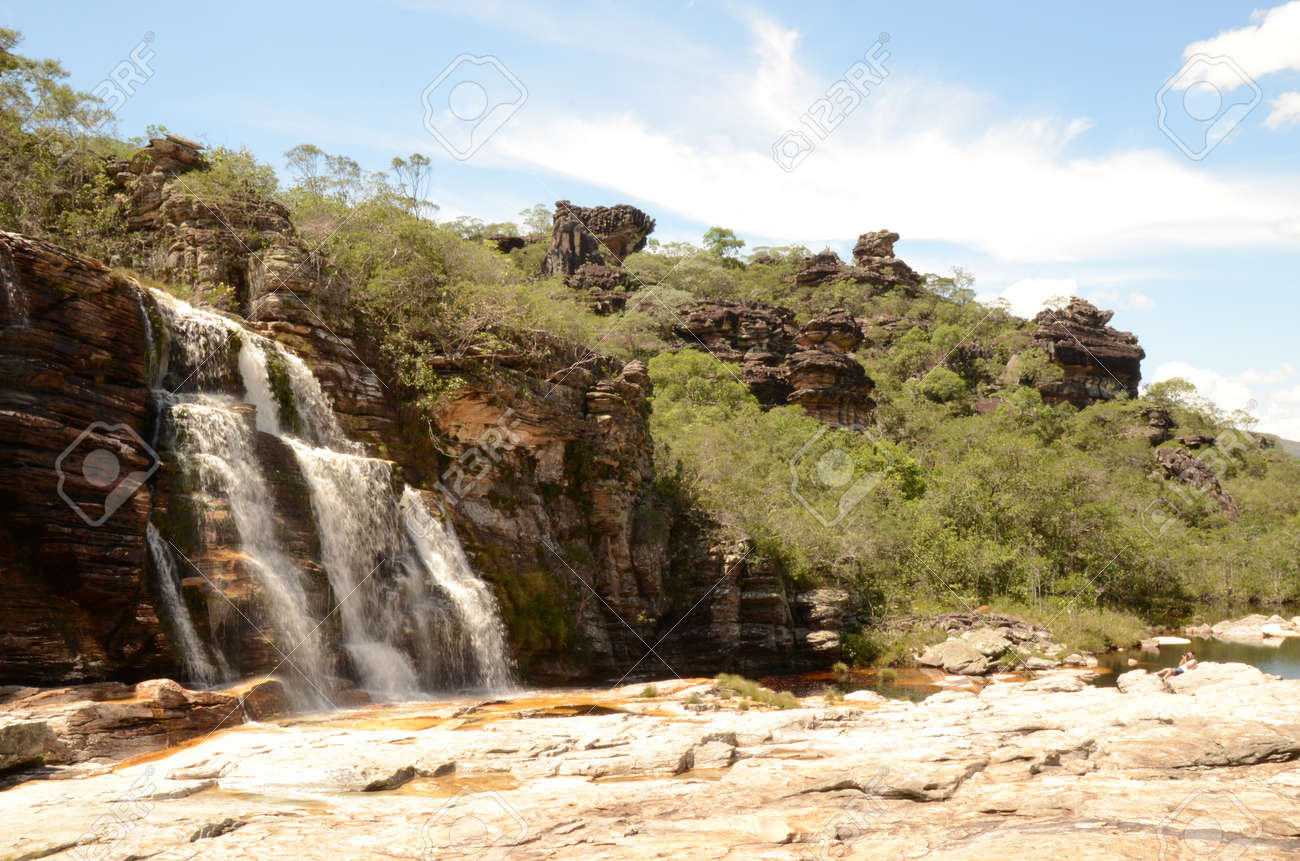 Waterfall in Rio Preto State Park in Minas Gerais at Cachoeira da Semper-Viva (translate to Always-Alive Waterfall, with is the popular name of Actinocephalus polyanthus) - 151845034