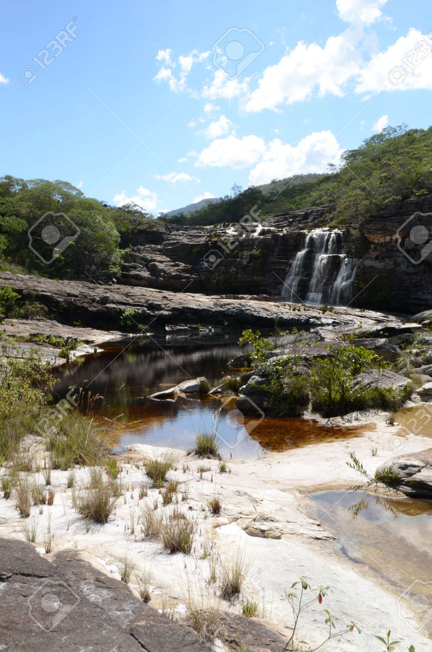Waterfall in Rio Preto State Park in Minas Gerais at Cachoeira da Semper-Viva (translate to Always-Alive Waterfall, with is the popular name of Actinocephalus polyanthus) - 151845043