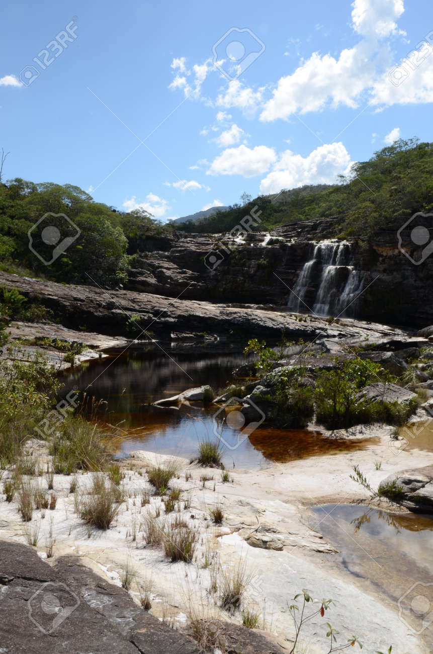 Waterfall in Rio Preto State Park in Minas Gerais at Cachoeira da Semper-Viva (translate to Always-Alive Waterfall, with is the popular name of Actinocephalus polyanthus) - 151845293