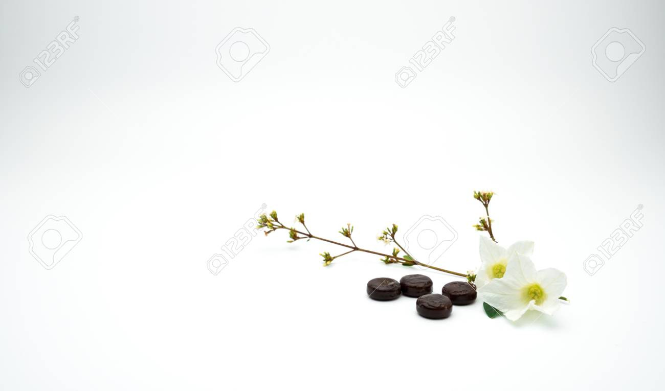White Flower Medicine Images Flower Decoration Ideas