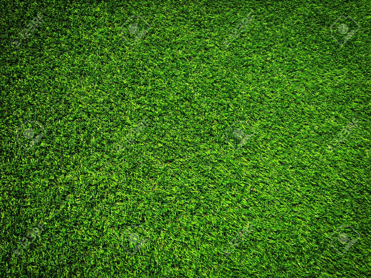 Nature green grass texture background for design. Eco concept. - 139078557