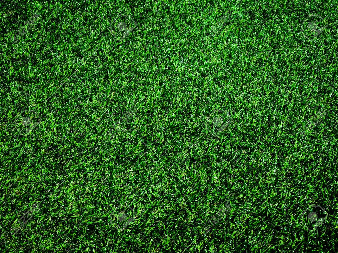 Top view of green grass texture background. Element of design. - 139926463
