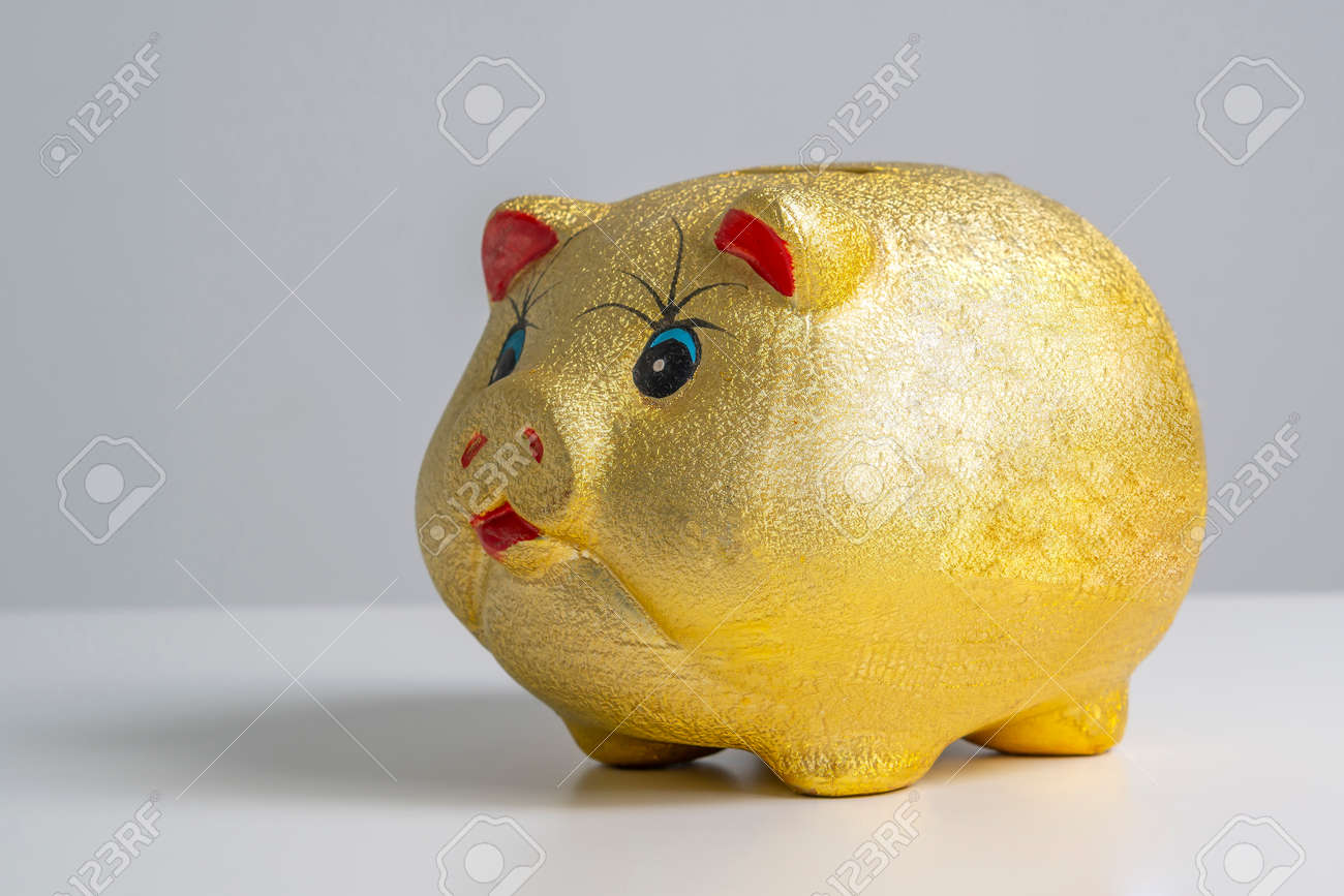 Finance concept, gold piggy bank with white background - 171448804