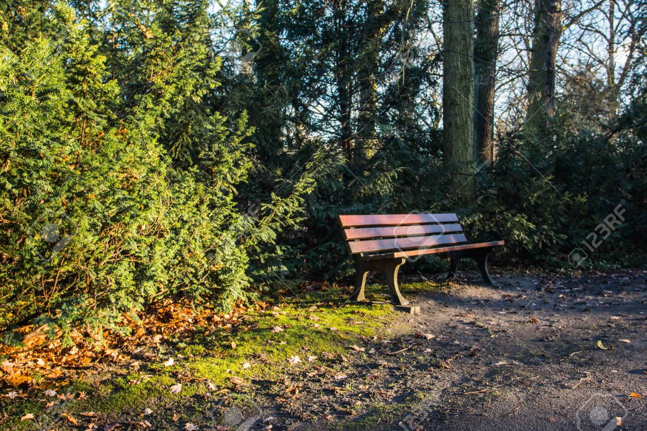 Wooden Bench In Autumn Park In Wroclaw Poland