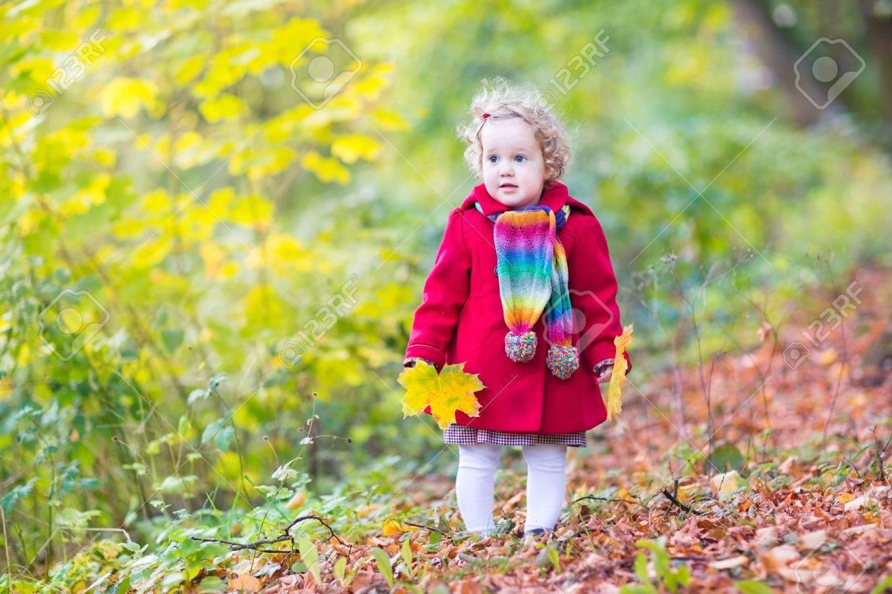 ... petite fille aux cheveux bouclés portant un manteau rouge et coloré  marche écharpe tricotée dans un parc ensoleillé d automne jouant avec des  feuilles ... 090ded66b83