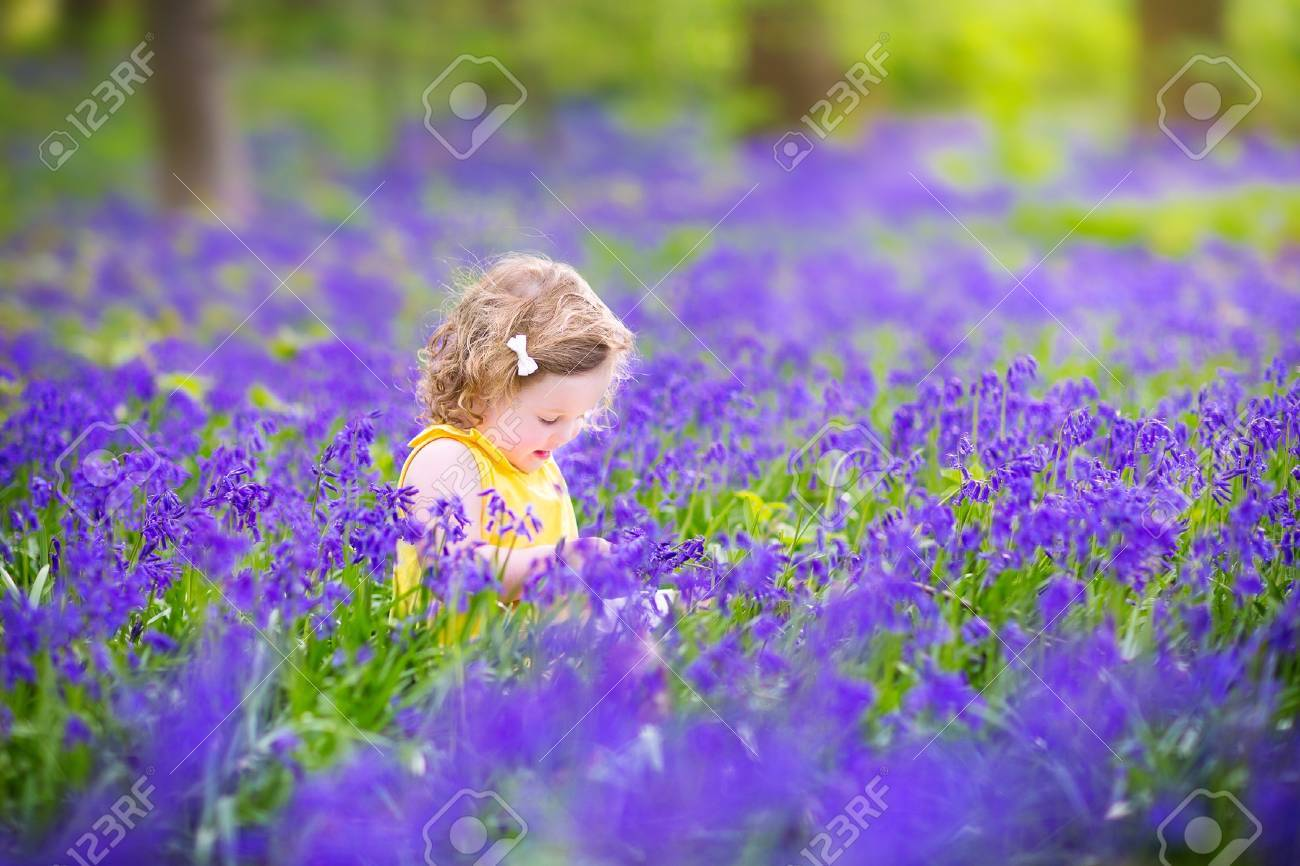 Adorable toddler girl with curly hair wearing a yellow dress stock adorable toddler girl with curly hair wearing a yellow dress playing with purple bluebell flowers in mightylinksfo