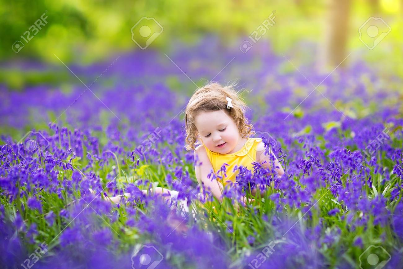 7975ae1b0 Adorable toddler girl with curly hair wearing a yellow dress playing with  purple bluebell flowers in