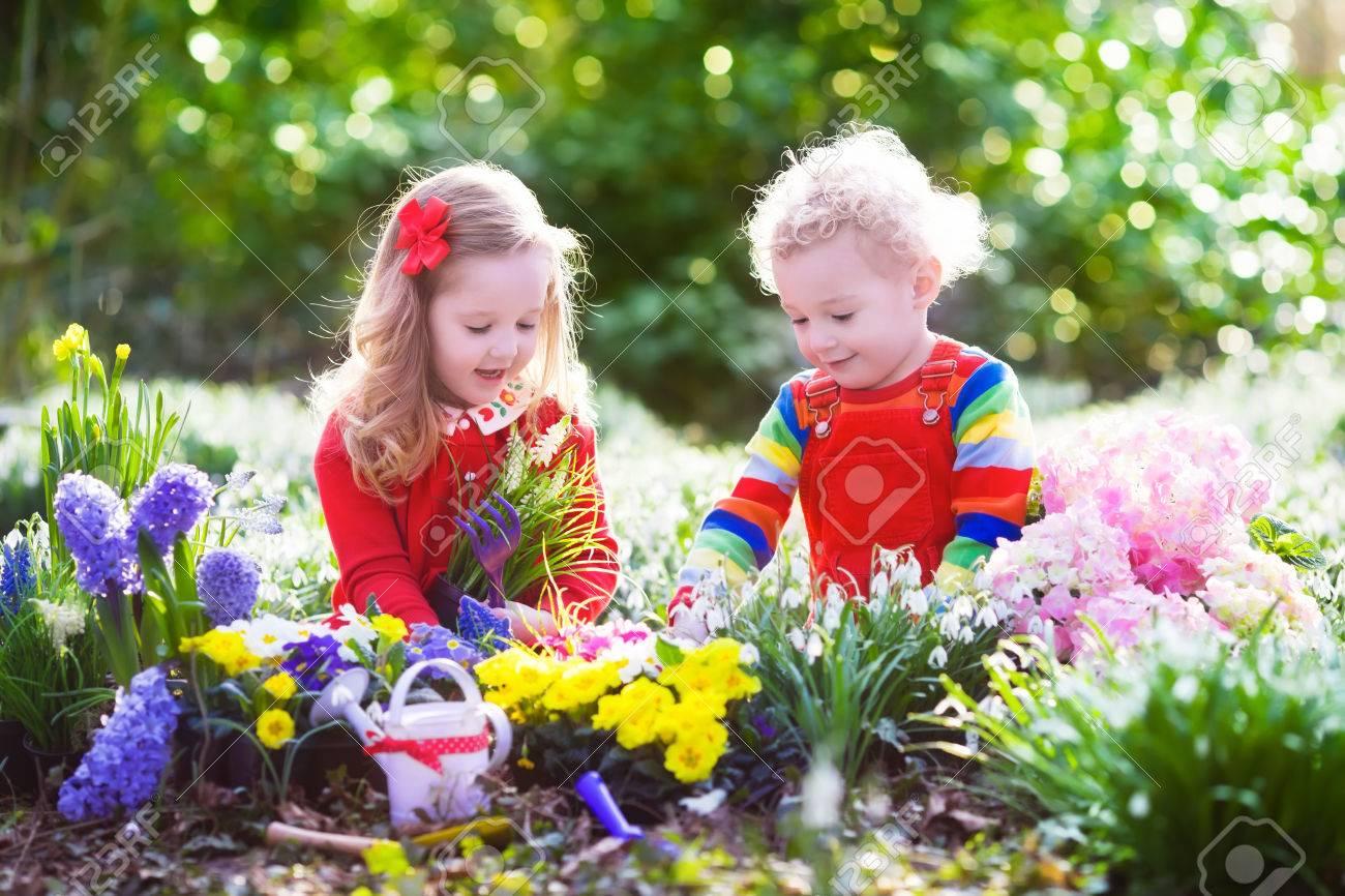 kinder zu pflanzen frühlingsblumen im sonnigen garten. kleiner junge