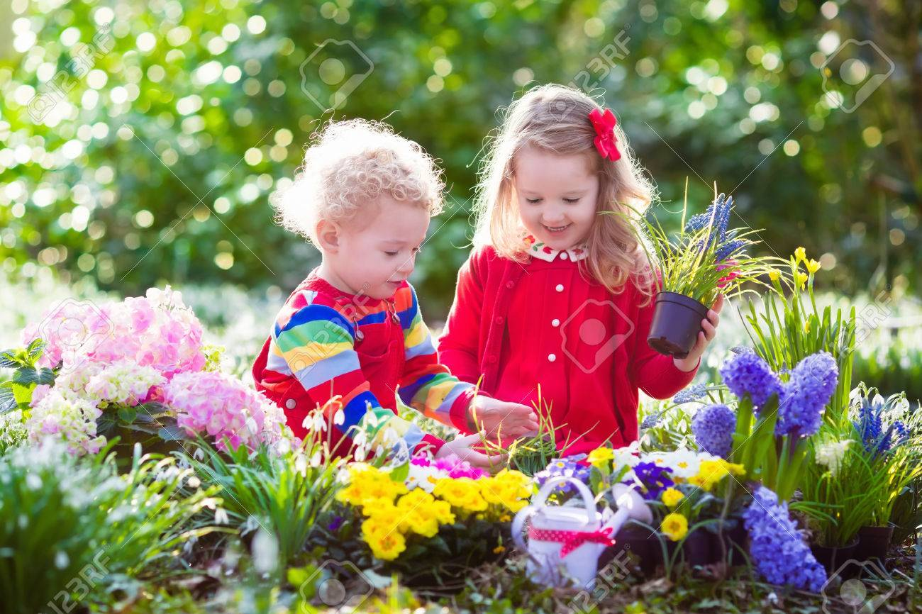 Children planting spring flowers in sunny garden little boy stock children planting spring flowers in sunny garden little boy and girl gardener plant hyacinth mightylinksfo Choice Image