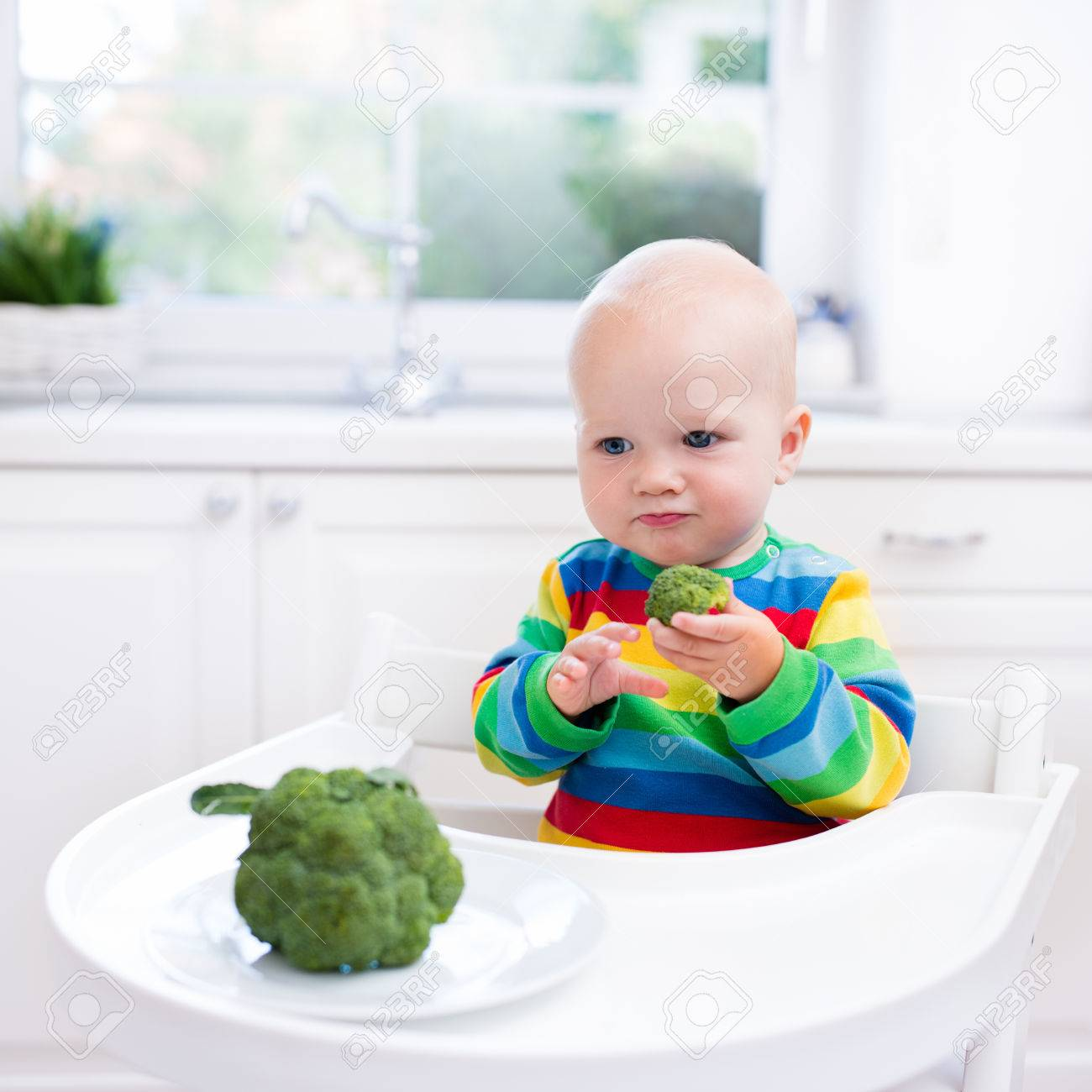 Happy Baby Sitting In High Chair Eating Broccoli In A White
