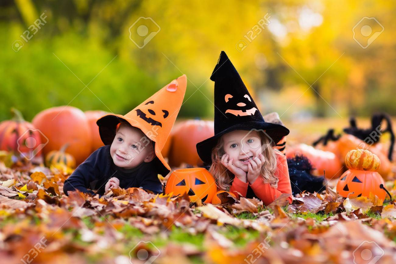 Children wearing black and orange witch costumes with hats playing with pumpkin and spider in autumn Park on Halloween. Kids trick or treat. Boy and girl carving pumpkins. - 61224343