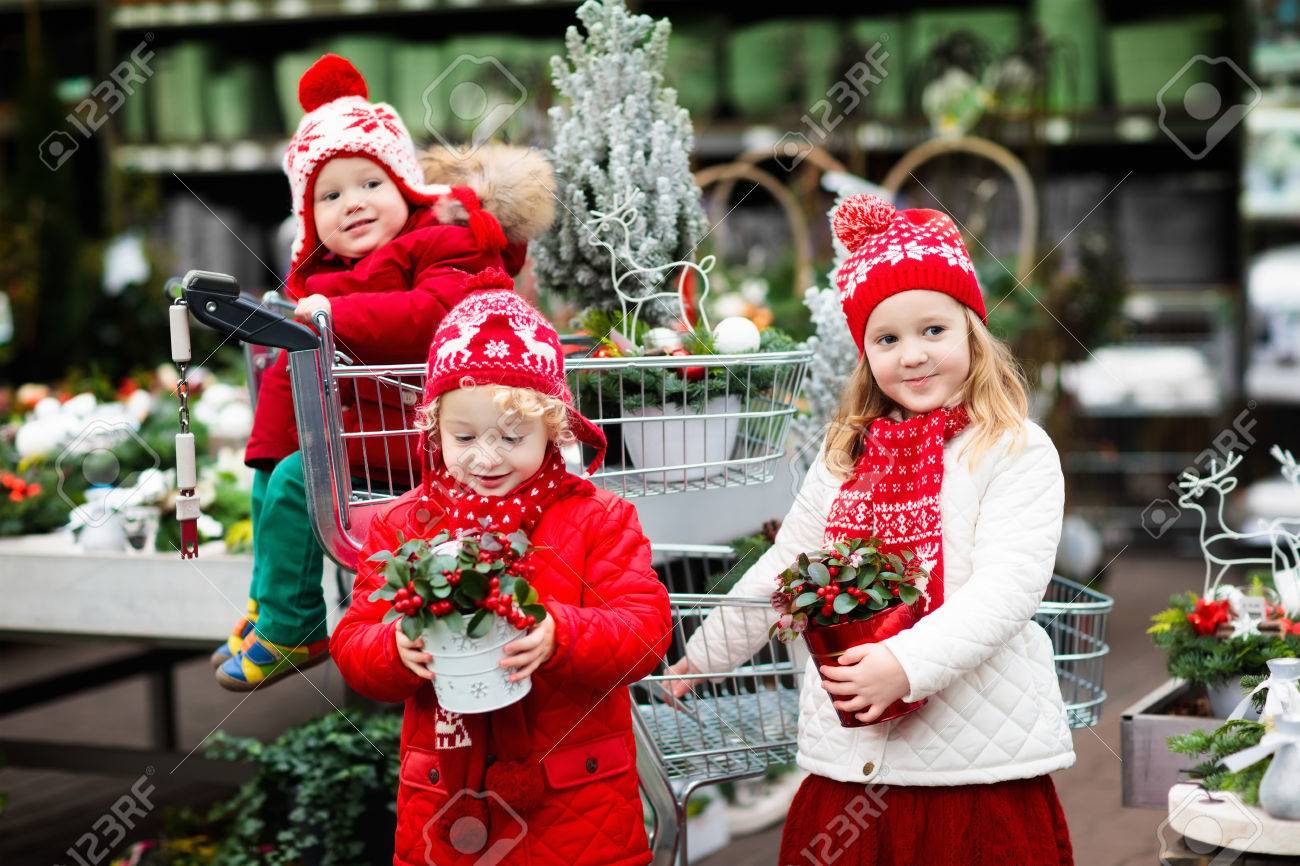Alvorlig Family Selecting Christmas Tree. Kids Choosing Freshly Cut Norway ZL-17