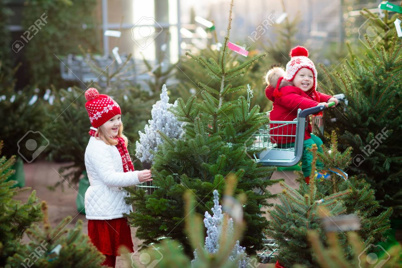 How to Choose Green Gifts for Christmas images