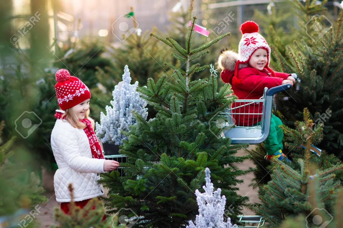 Forum on this topic: How to Choose Green Gifts for Christmas, how-to-choose-green-gifts-for-christmas/