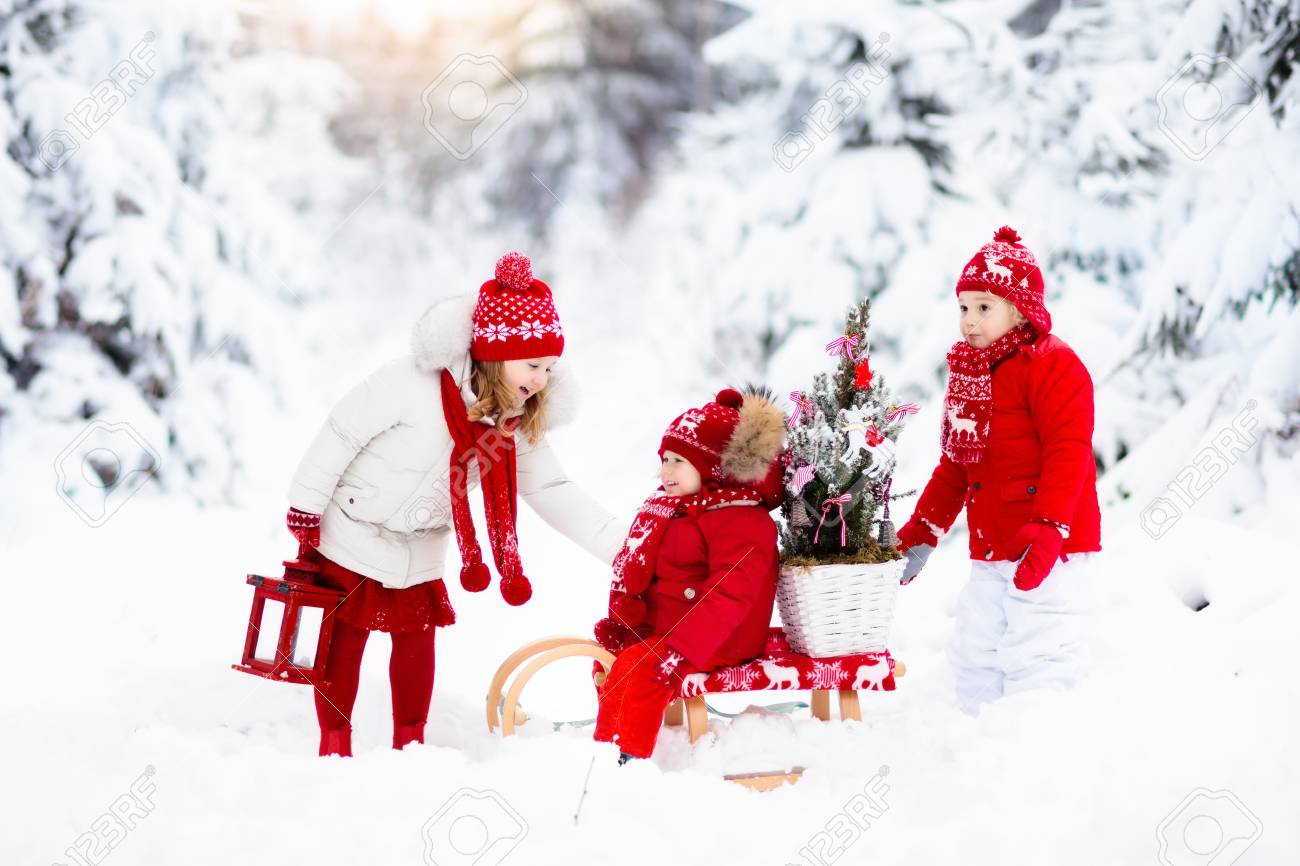 Children With Christmas Tree On Wooden Sled In Snow Kids Cut