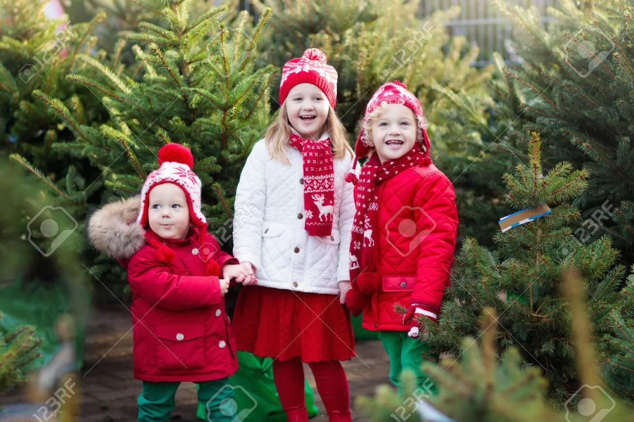 Helt nye Family Selecting Christmas Tree. Kids Choosing Freshly Cut Norway ZD-66