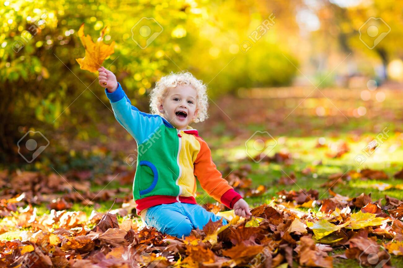 Kids play in autumn park. Children throwing yellow and red leaves. Little boy with oak and maple leaf. Fall foliage. Family outdoor fun in autumn. Toddler kid or preschooler child in fall. - 128866799
