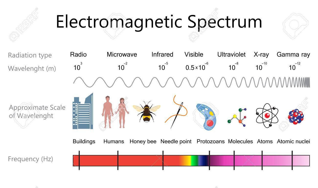 Diagram of the electromagnetic spectrum wiring diagram portal electromagnetic spectrum diagram royalty free cliparts vectors rh 123rf com diagram of electromagnetic spectrum pdf examine ccuart Image collections